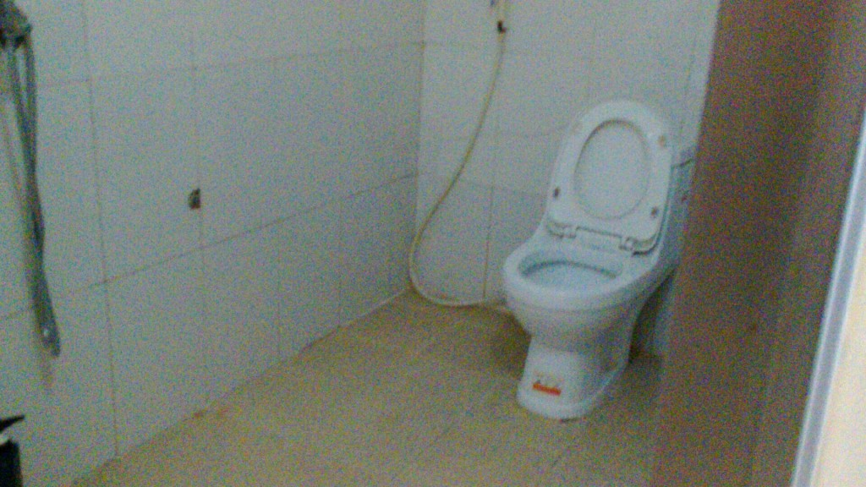 ドーソンのニャギCHI MAIの浴室